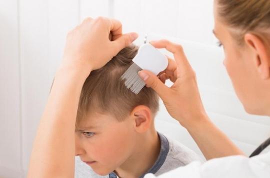 Fipronil : des parents utilisent le pesticide pour éliminer les poux de leurs enfants