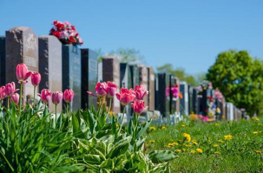 Des gènes se réactivent après notre mort