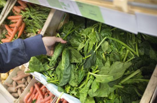 Pour lutter contre les fringales, misez sur l'extrait d'épinard