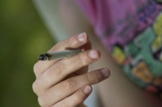 Cannabis : fumer pendant la puberté rend plus petit