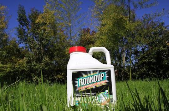 Glyphosate : l'Europe reporte le vote