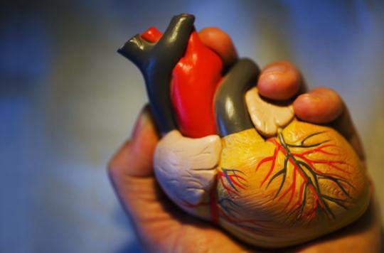 Maladies cardiovasculaires :  revoir les schémas de prévention