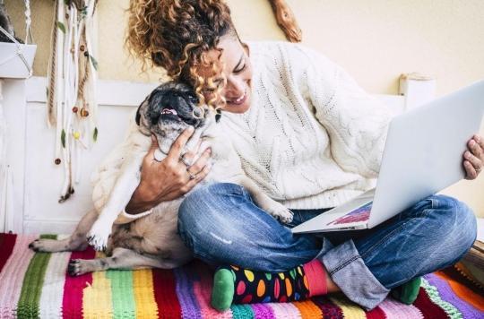 Anxiété : caresser des chiens et des chats réduit le stress