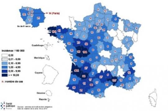 Rougeole : extension d'une épidémie qui n'aurait pas dû réapparaître en France
