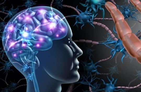 Sclérose en plaques: un traitement pour freiner la maladie et protéger le système immunitaire