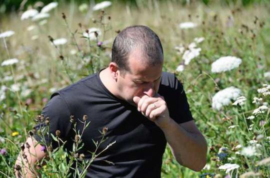 Allergies : les graminées envahissent la France