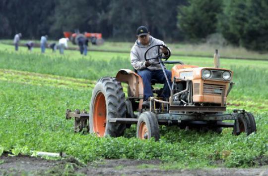 Pesticides : des agriculteurs remettent en cause les risques