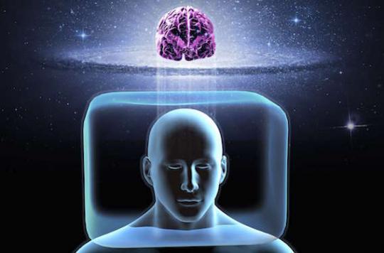 Cerveau : pas de différence entre les sexes