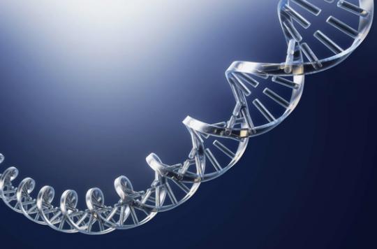 Cancer du sein, Alzheimer : les bien-portants veulent connaître leur prédisposition génétique
