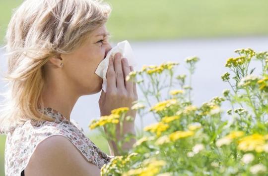 Allergies : 28 départements en zone rouge