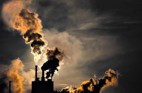 Pollution : les particules fines responsables de maladies rénales