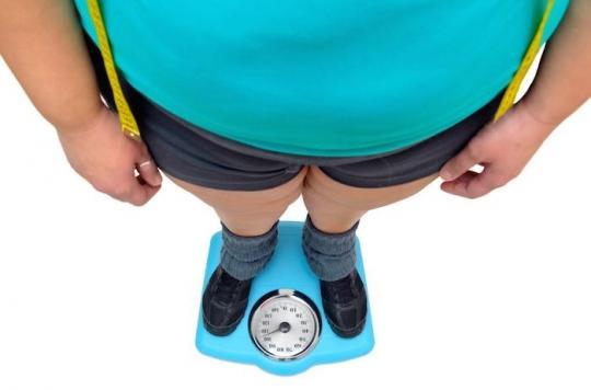 Comment les perturbateurs endocriniens favorisent la reprise de poids après un régime