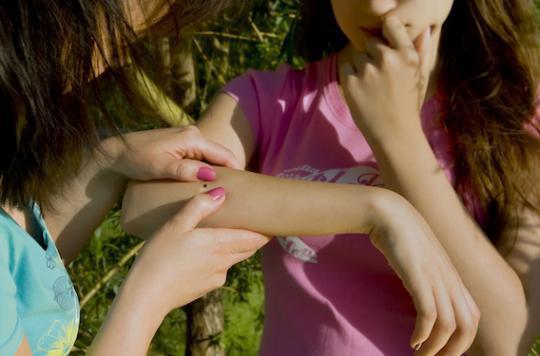 Maladie de Lyme : les patients dénoncent le déni de l'Etat