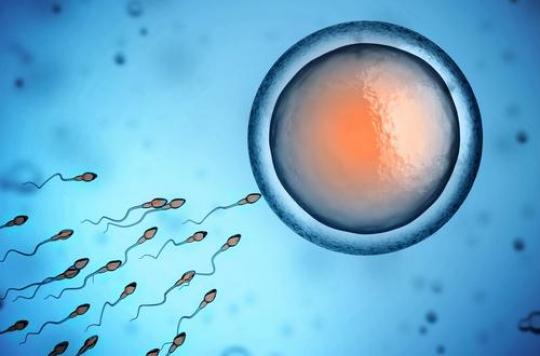 Echecs de l'application de contraception basée sur les méthodes naturelles. L'inventeur se défend mollement et l'enquête se poursuit
