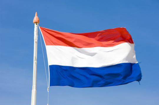 Pays-Bas : 350 médecins contre l'euthanasie de patients déments