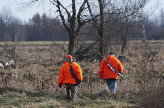 Alsace : trois chasseurs ont confondu lait et insecticide