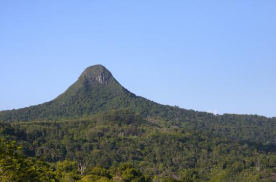 Lèpre : 56 cas à Mayotte et 4 à La Réunion en 2015