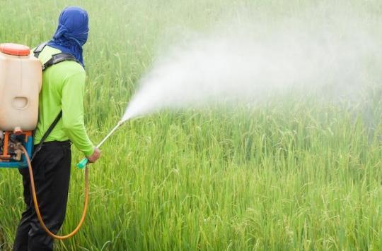 Pesticides : deux salariés de Triskalia demandent réparation