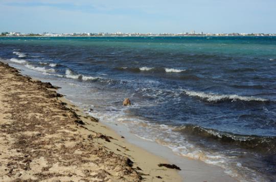Eaux de baignade en Europe : les plages françaises mal notées