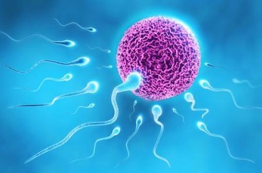 Le stérilet, la contraception la plus utilisée dans le monde