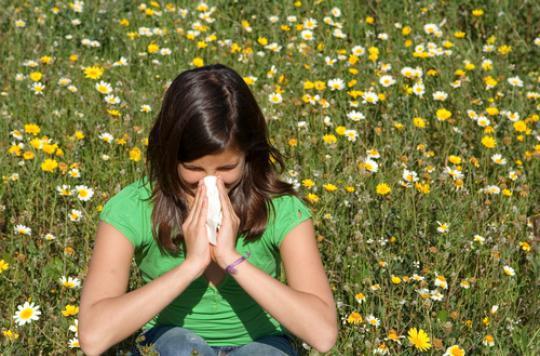 Allergies : du bouleau pour dimanche