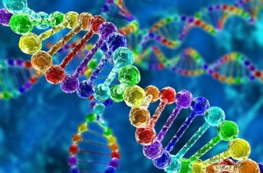 Les gènes du cancer du sein augmentent le risque d'avoir le cancer, mais pas la mortalité