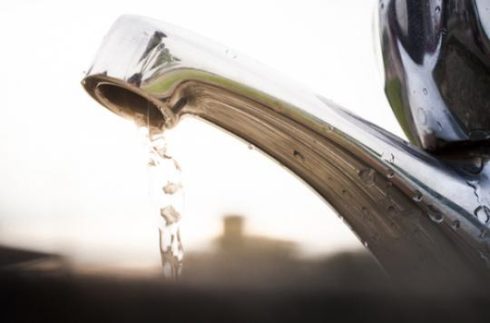Nitrates : une commune des Vosges privée d'eau courante