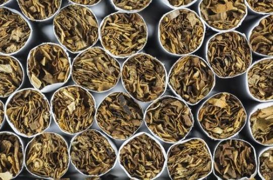 Cigarettes : la nouvelle marque des buralistes inquiète les tabacologues