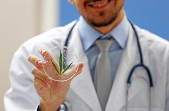 Cannabis : contravention « et, en même temps », poursuites éventuelles selon le gouvernement