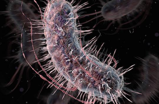 Antibiotiques : un test pour éviter les prescriptions inutiles