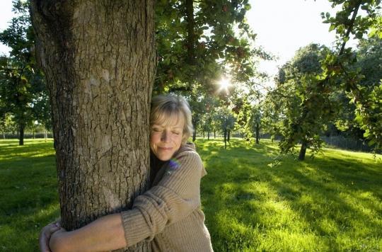 Cet été, améliorez votre santé mentale avec les arbres!
