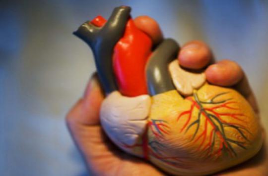 AVC : un risque élevé en cas de malformation cardiaque congénitale