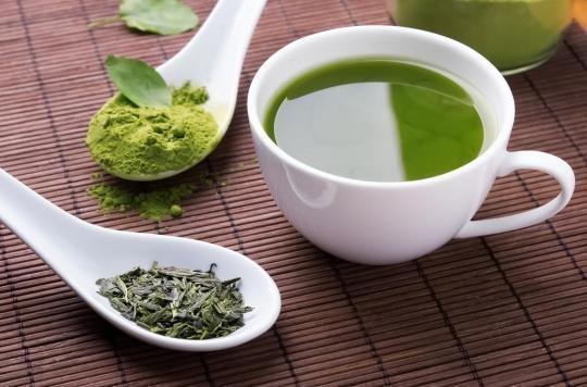 Obésité : le thé vert aiderait à perdre du poids