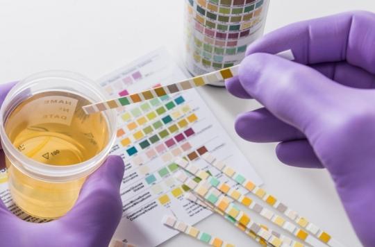 L'urine, un outil fiable pour les scientifiques