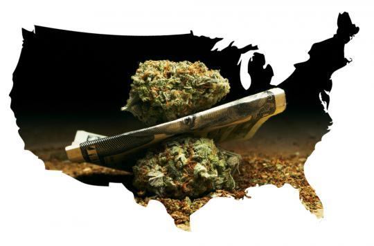 Cannabis : un collectif de médecins plaide pour sa légalisation