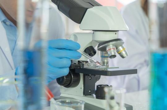 Les mutations du virus seraient minimes, rendant possible la mise au point d'un vaccin unique