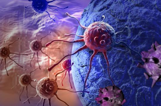 Cancers : une piste d'avenir pour le vaccin universel