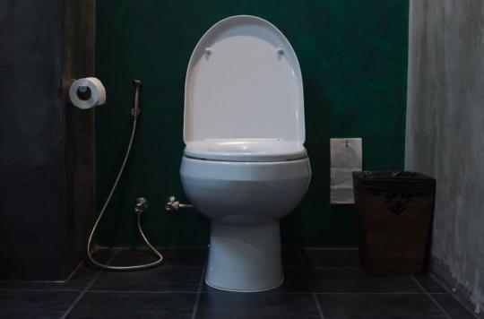 Détecter l'insuffisance cardiaque grâce au siège de ses toilettes