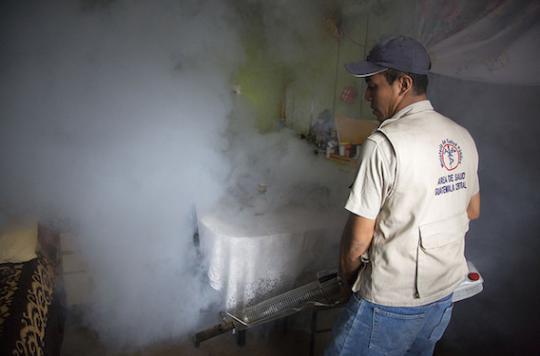 Zika : le réchauffement climatique favorise son arrivée en Europe
