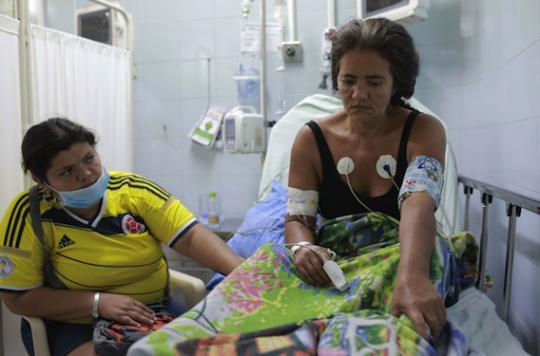 Zika : le virus provoquerait une maladie auto-immune grave