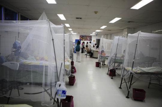 Zika : le virus mis en cause dans une nouvelle affection neurologique