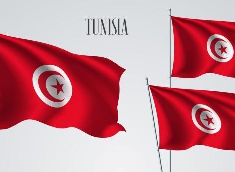 Onze bébés décédés dans une maternité de Tunis : le ministre de la Santé demissionne