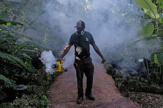 Zika : l'épidémie menace plusieurs Etats américains