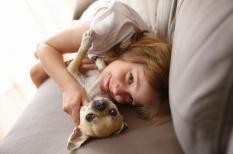Giardiose : une parasitose intestinale fréquente, transmise par le chien